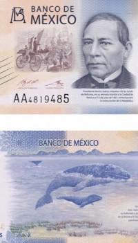 Sociedad y naturaleza en los nuevos billetes: colaboración AML-Banco de México