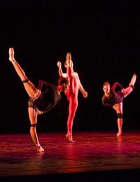 José Luis Díaz Gómez explica la danza desde la neurociencia